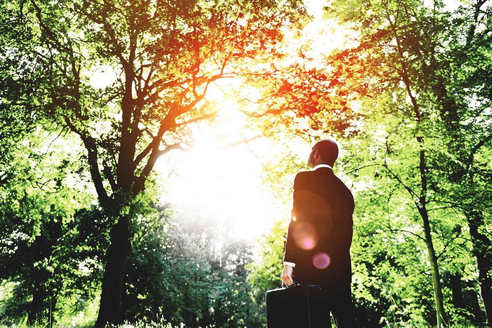 דמיון מודרך – תפקידו של תת המודע בהצבת מטרות